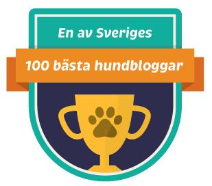 100hundbloggar